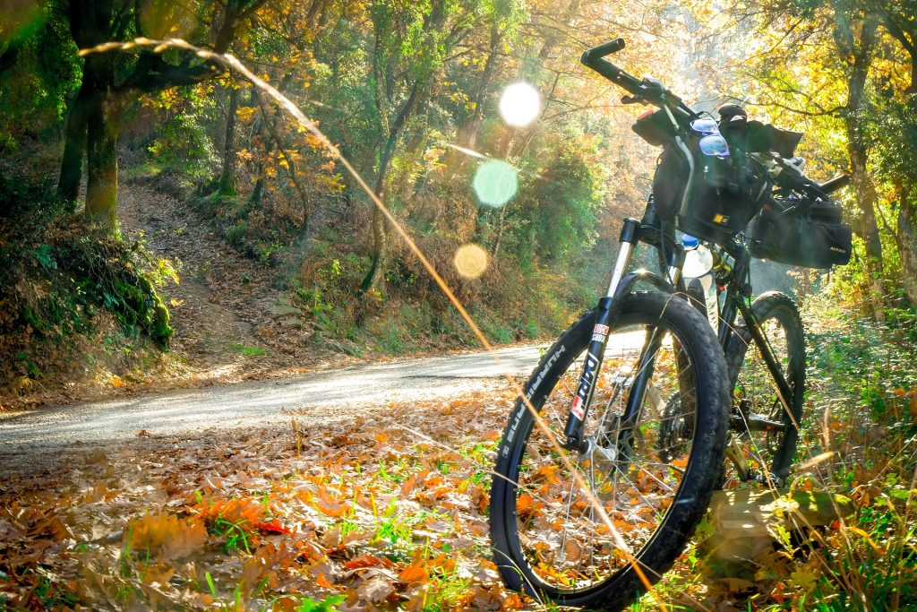 budget mtb bike under 1000