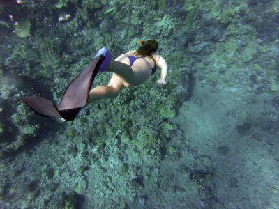 best freediving fins