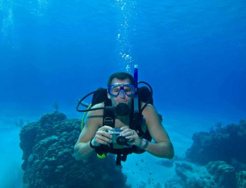 Top 11 Best Underwater Cameras for Scuba Diving for 2019