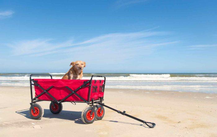 best beach cart wagon