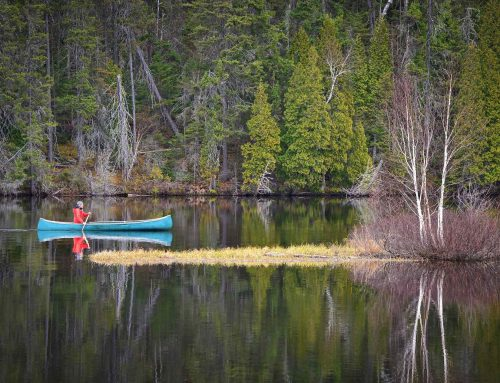 Top 7 Best Canoes for 2019