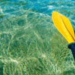 Top 11 Best Kayak Paddles for [currentyear]