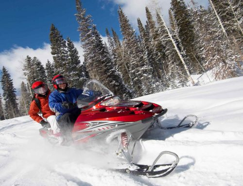 Top 9 Snowmobile Helmets for 2019