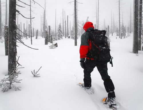 Top 15 Best Boots for Snowshoeing for 2020
